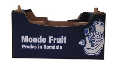 Cutie pentru fructe