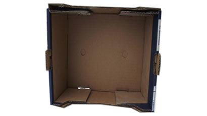 Interior cutie din carton pentru fructe